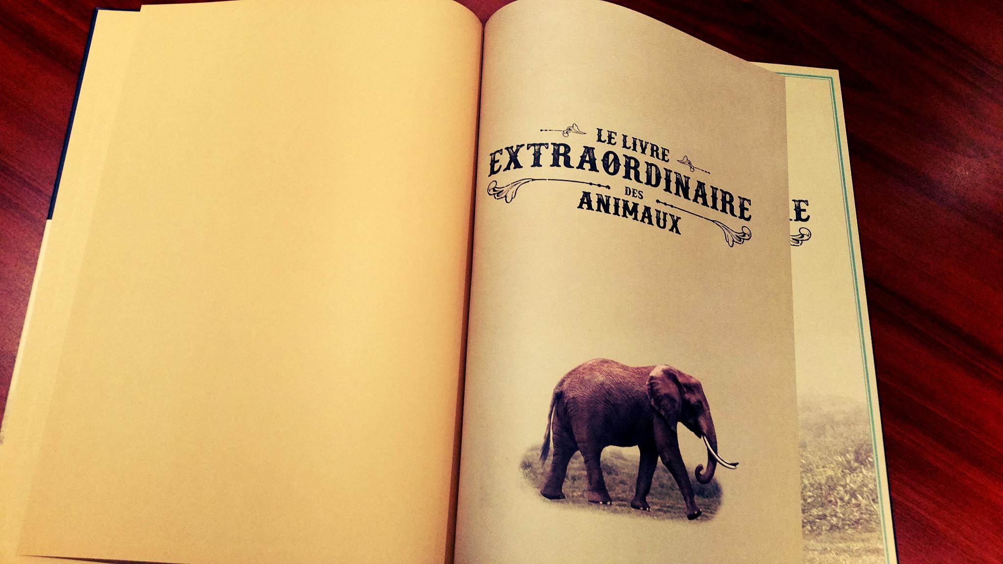 Le Livre Extraordinaire Des Animaux En Images Little Urban