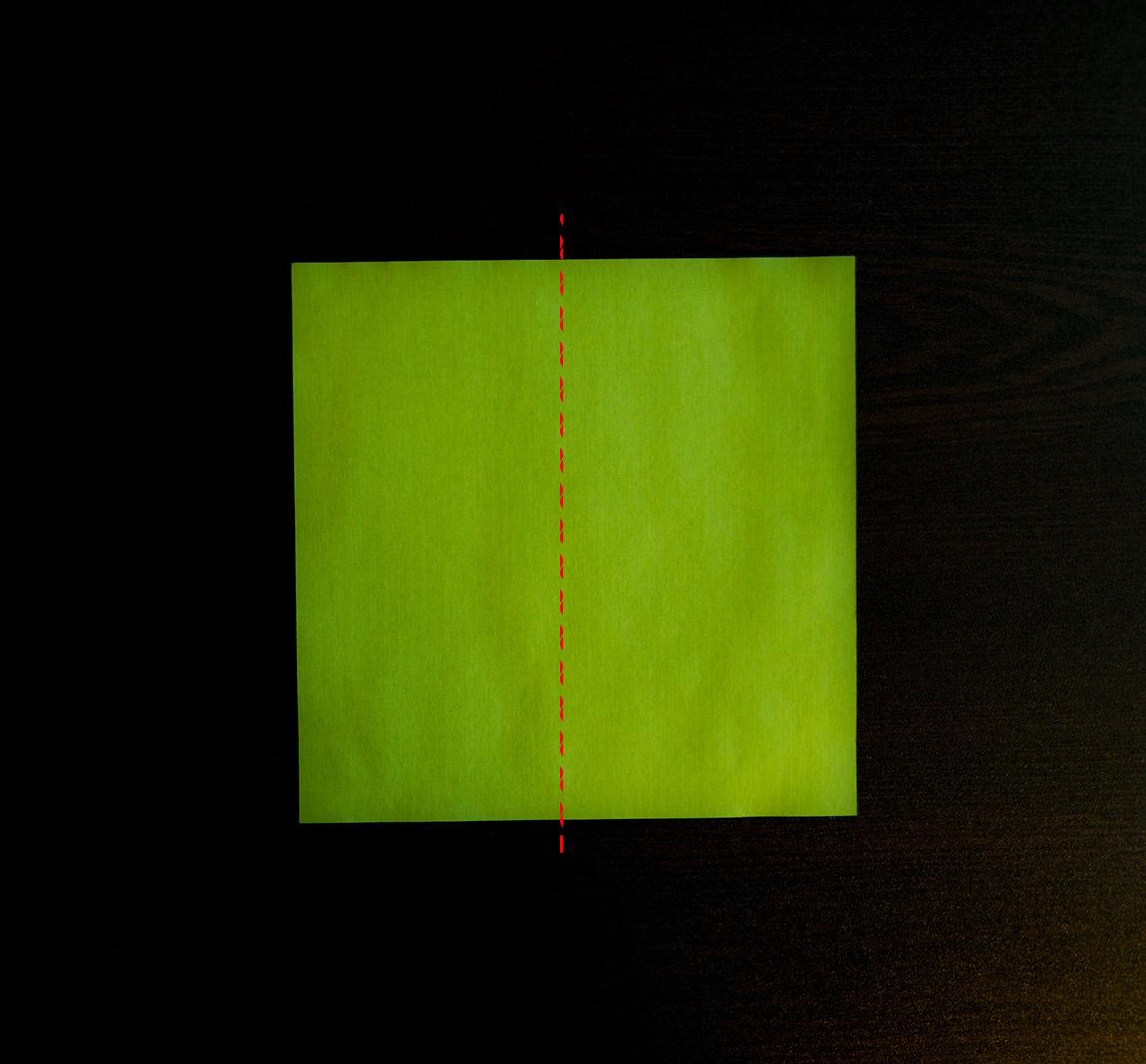 Plie la feuille en deux dans le sens de la hauteur, côté vert. Déplie