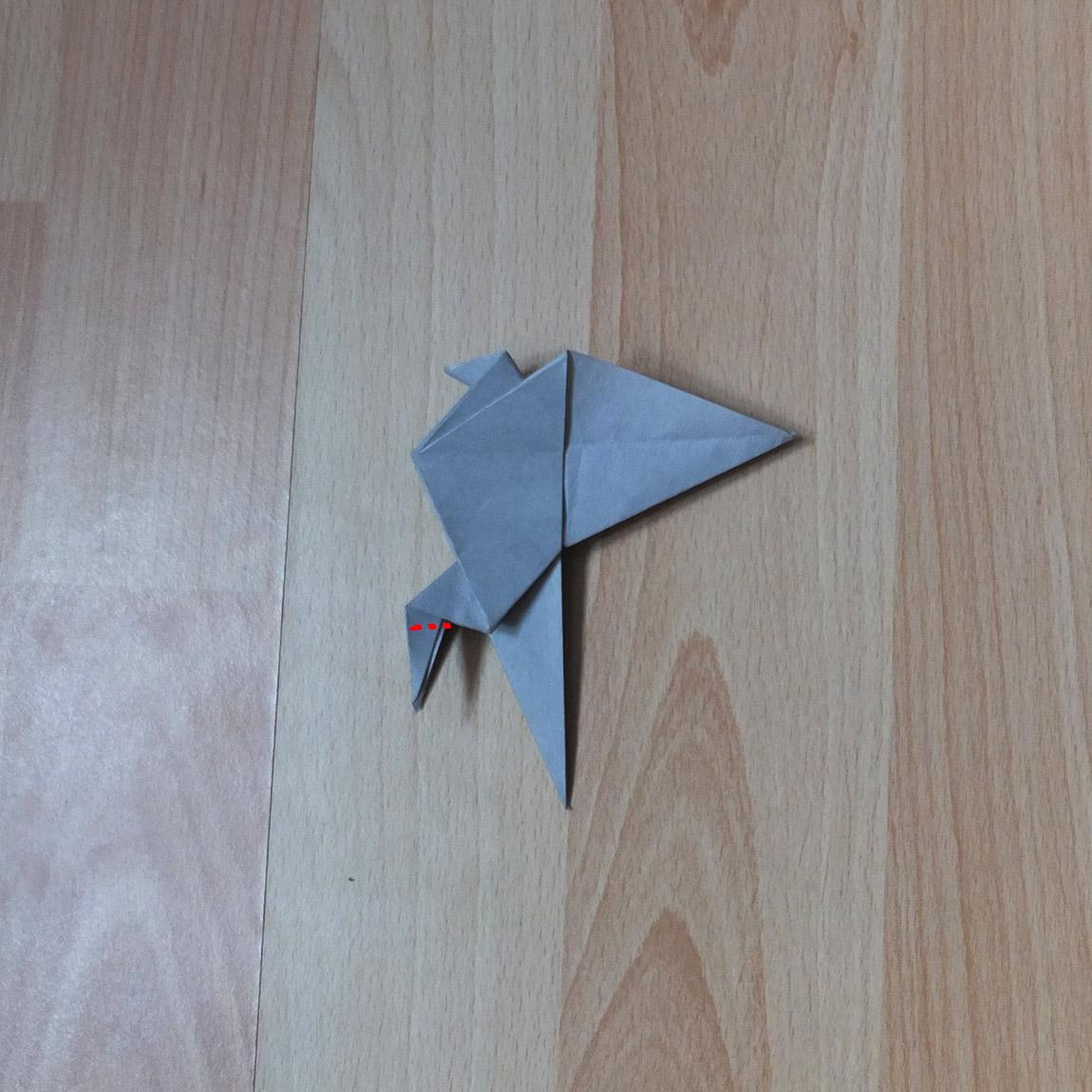 pigeon12