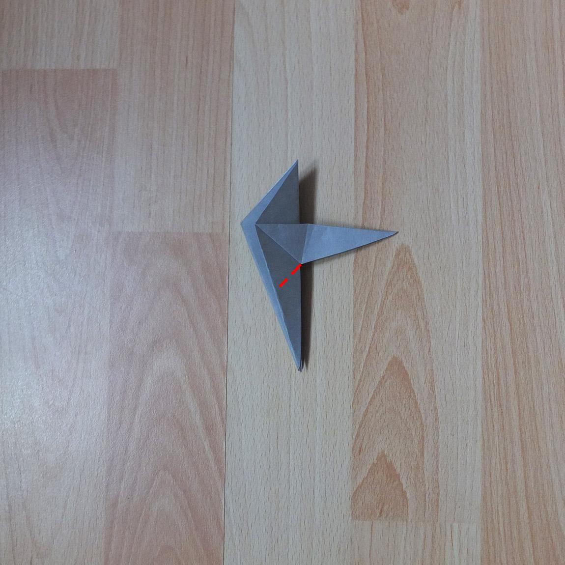 pigeon8